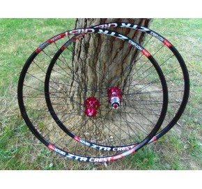 Ryde Trace Xc 21 (Crest) + Dt Swiss 240 + Radios 1,8mm